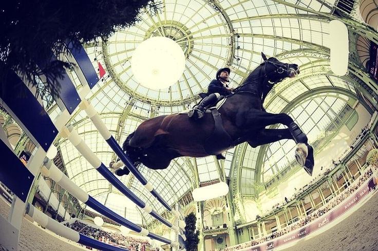 Paris   Saut Hermès .. Entre Ciel et Terre .. au Grand Palais