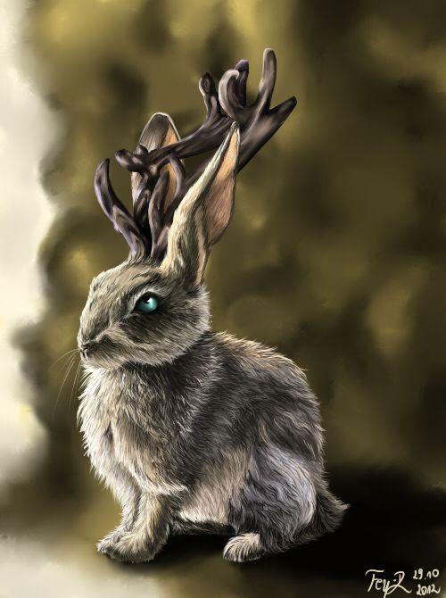 кролики фэнтези картинки профессиональное образование