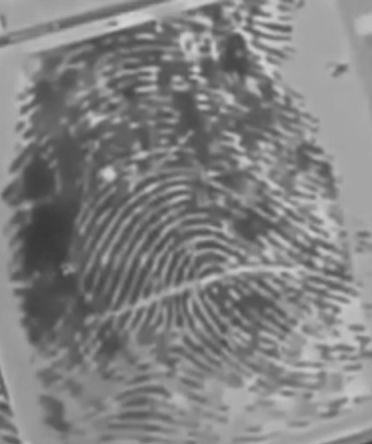 Crime Scene Investigator Tools