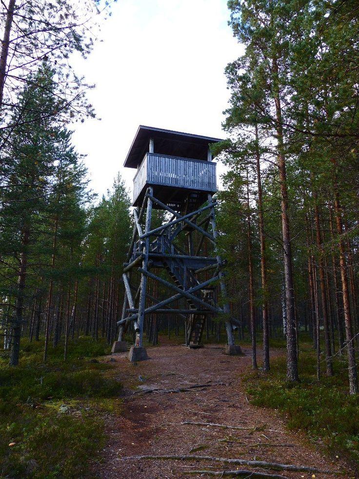 Lintutorni - Nummikangas