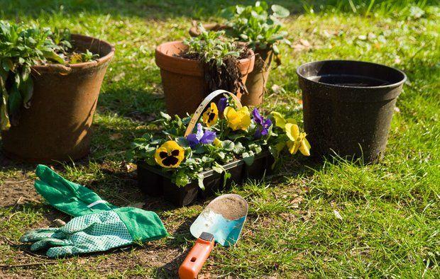 10 gode råd til haven i maj