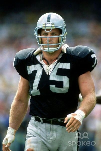Hall Of Fame Howie Long Los Angeles Raiders Oakland Raiders Silver and Black