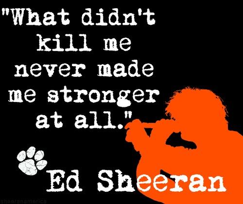 Ed Sherran