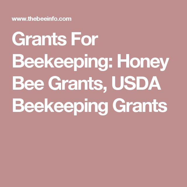 Grants For Beekeeping: Honey Bee Grants, USDA Beekeeping Grants #beekeeper #raisingbees