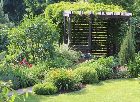 Сад Галины Скалкиной, идеи для сада, дизайн сада, хвойные в саду, беседка, сочетание растений