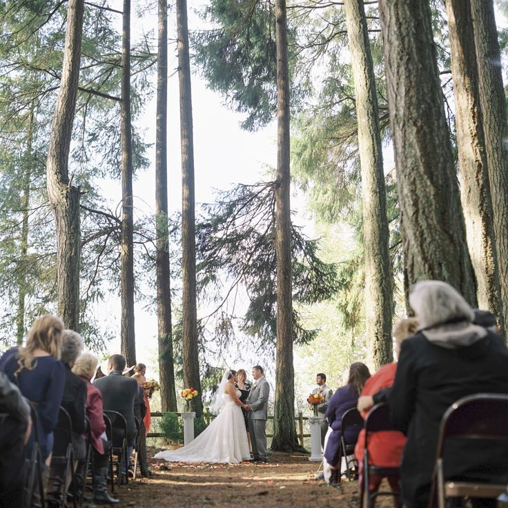 A Beautiful Fall Wedding At Kitsap Memorial State Park