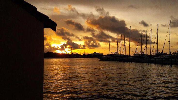 Golden sunsets!