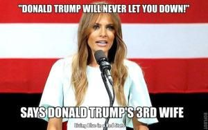 Funniest Memes Mocking Melania Trump's Plagiarized GOP Convention Speech: Trump Will Never Let You Down