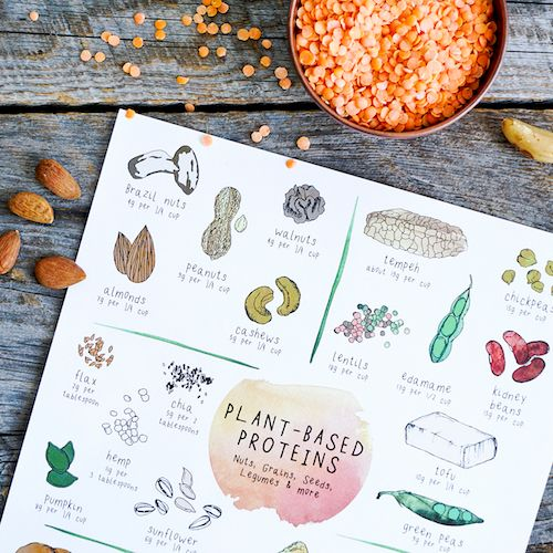 The world of whole, plant-food offers plenty of options when it comes to protein sources!