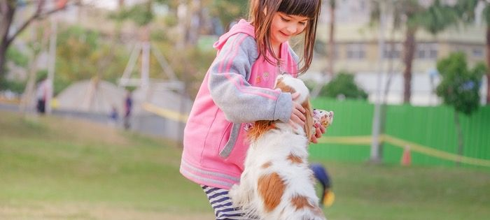 Many people swear by pets for improving their quality of life. And that's by and large true!