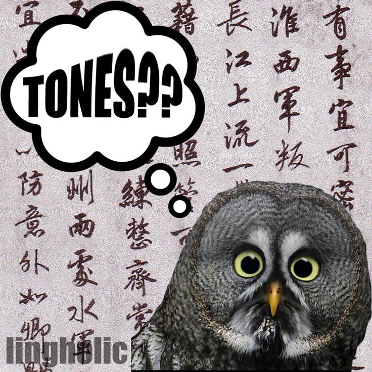 How to Learn Tones in a Foreign Language - lingholic