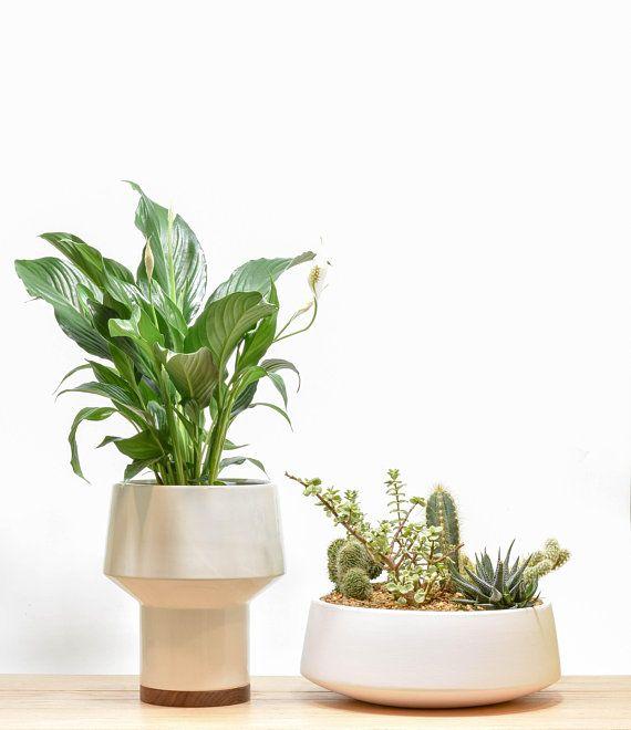 Remarkable Succulent Planter Succulent Bowl Tabletop Succulent Planter Interior Design Ideas Apansoteloinfo