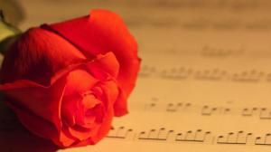 Love Quotes Generator http://www.howmuchdoi.com/love/Love-Quotes-Generator-364.html