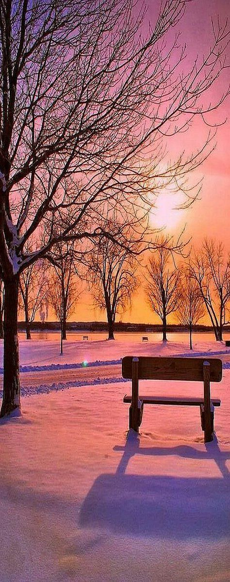 #christmasgiftswhitesnow#elk#present#flychord#digitalpiano#forests#ladder#sunrise#grass#lights#street#nights