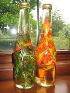 Nasturtium vinegar and other medicinal uses for colds and respiratory problems