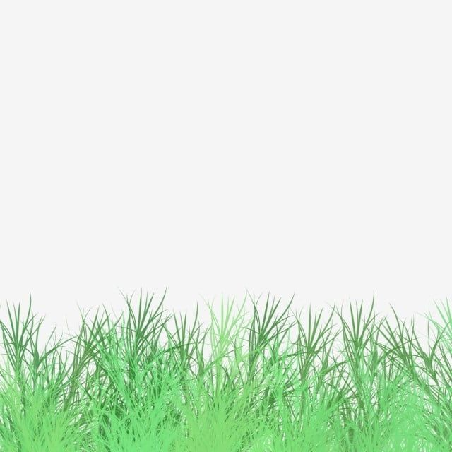 Decorative Green Space Fresh Green Grass Grassland Grass Green Grass Cartoon Green Grass Png Transparent Clipart Image And Psd File For Free Download Green Grass Background Grass Background Green Space