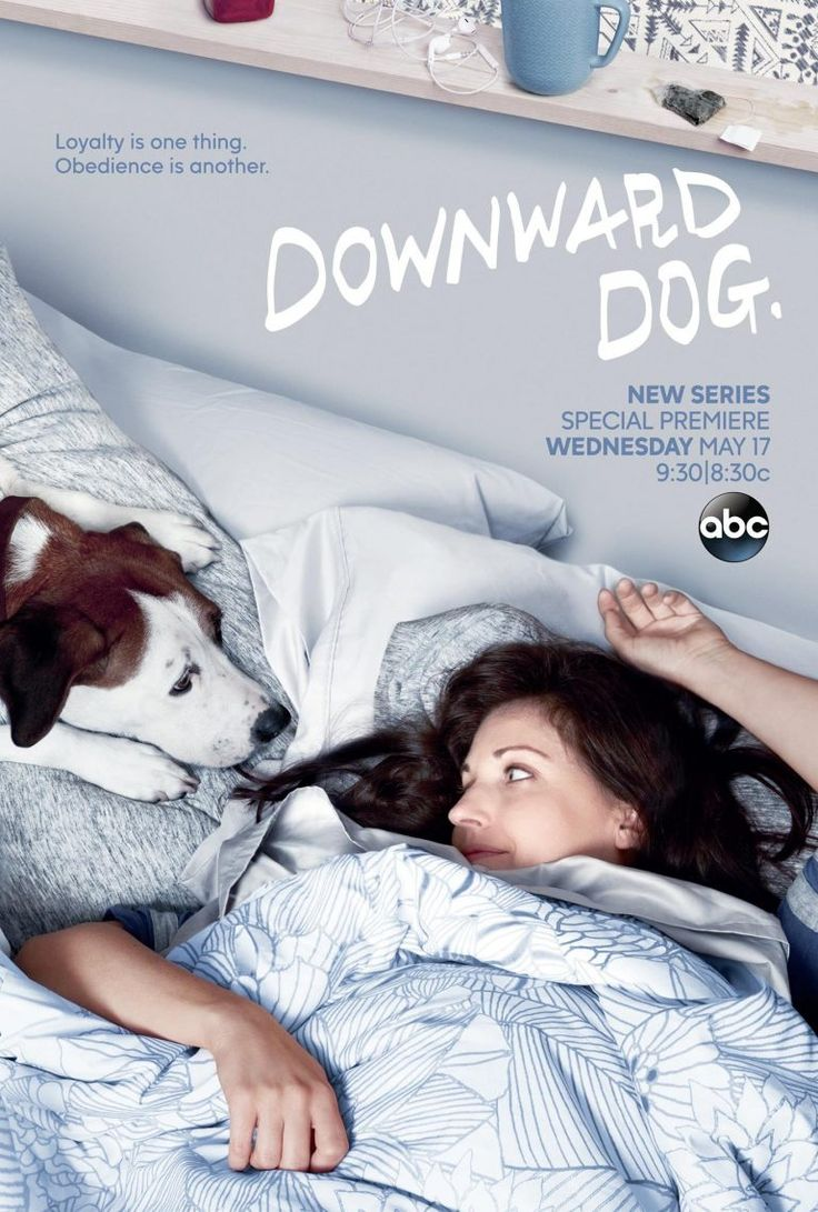Downward Dog | New Show On ABC | TV Shows To Watch | Lady and The Blog