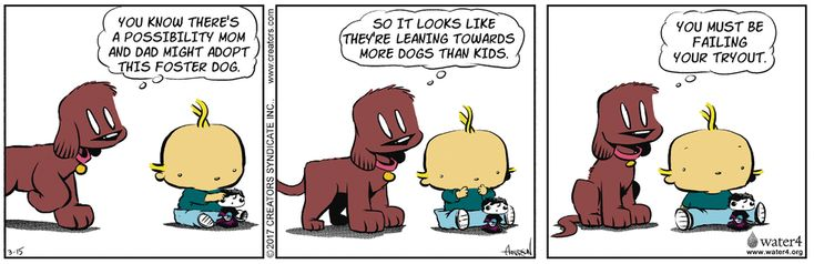 Dog Eat Doug by Brian Anderson for Mar 15, 2017 | Read Comic Strips at GoComics.com