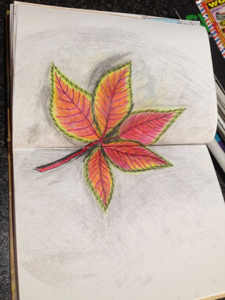 Autumn leaf attempt