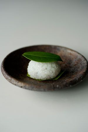 椿餅 Tsubaki Mochi - sweet Aduki bean paste wrapped in pounded steamed glutinous rice (Domyoji), garnished camellia leaves