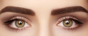 3D Brows- Embroidery + Microblading | Charlotte Day Spa