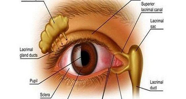 Ez a 4 hozzávalóból álló vitaminbomba már rengeteg ember látását visszaadta