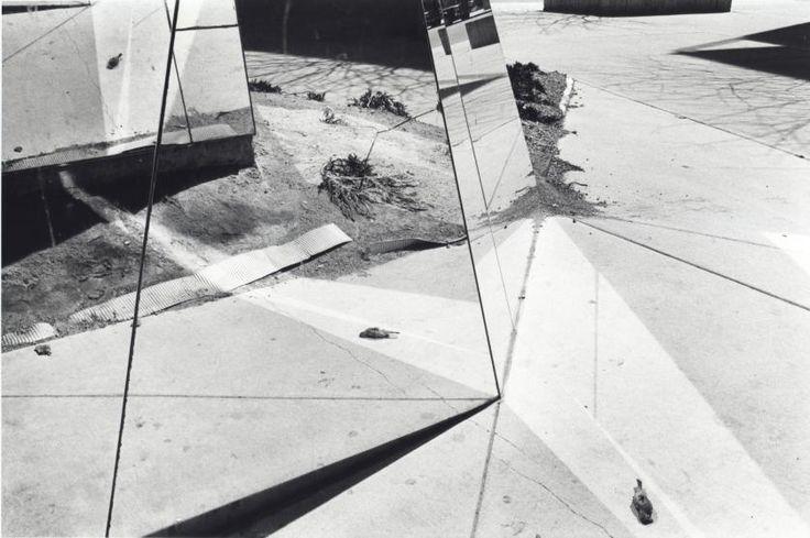 Dead Bird in Mirror, Florida, ca. 1975