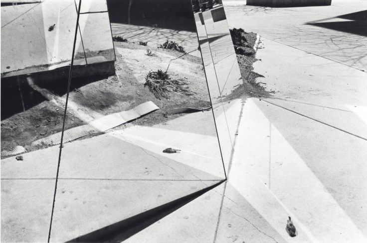 Dead Bird in Mirror, Florida, ca. 1975