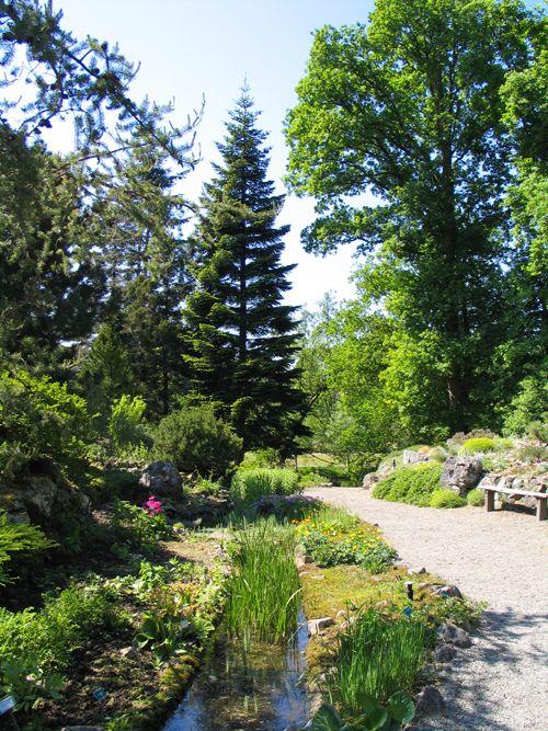 Rotstuin, Botanische Tuinen Utrecht