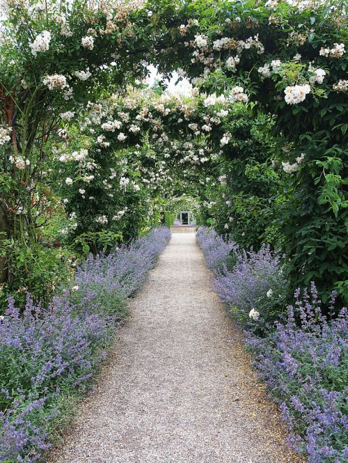 Secret Garden: 106 Best Images About Paths & Walkways On Pinterest