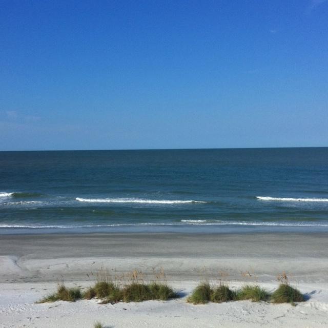 Indian Beach: 27 Best Indian Rocks Beach & Indian Shores, Florida Images