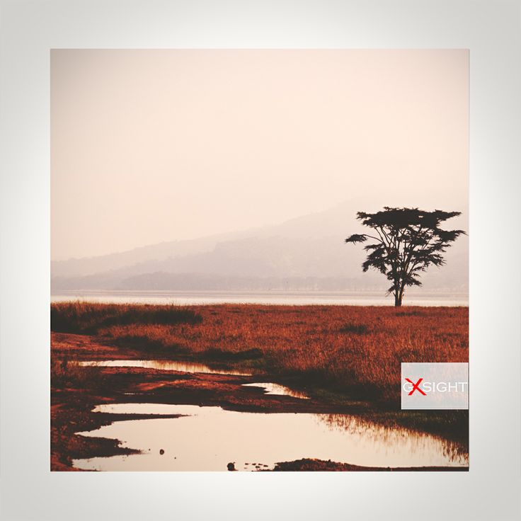 Africa Lake Nakuru early morning after the rain  #GXSIGHT #PHOTOGRAPHY #ART #PRINTS