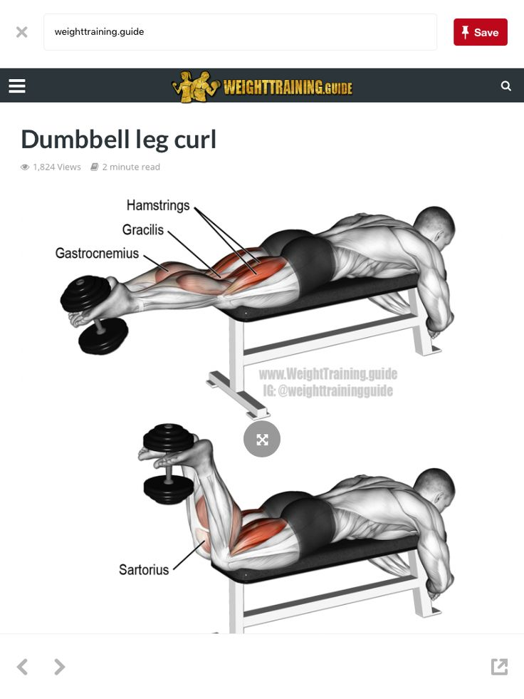 55 best Bodybuilding Anatomy - Legs images on Pinterest   Workouts ...