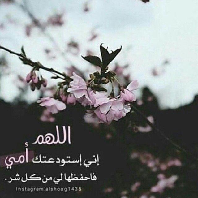 اللهم احفظ لي إمي Quran Quotes Picture Book Instagram
