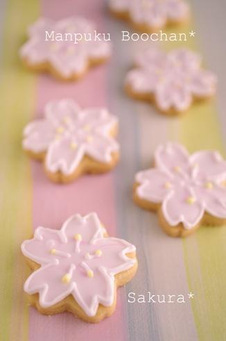 桜クッキー / sakura cookies