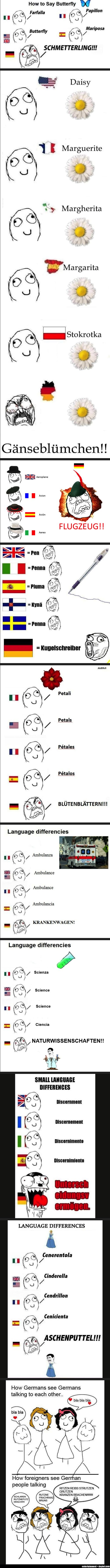 "Oh, my goodness - I am laughing in a terribly obnoxious way. A Collection of ""Language Differences"" memes...or, ""Language Differencies"", if one is to be exact."