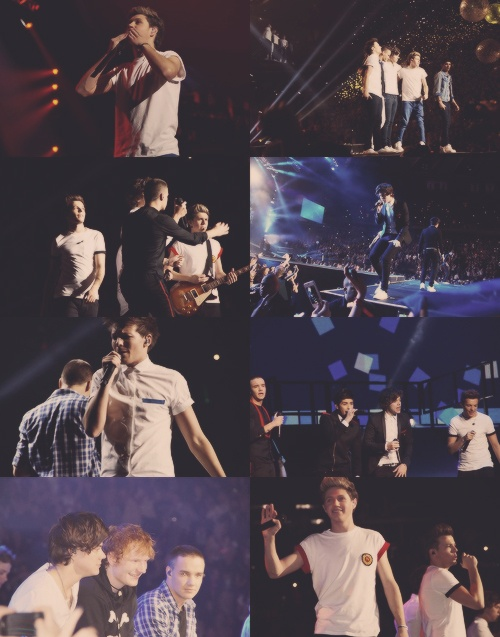 61 best images about one direction msg on pinterest - Harry styles madison square garden ...