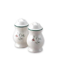 Pfaltzgraff® Winterberry Salt and Pepper Set  sc 1 st  Pinterest & 48 best My Winterberry dishes images on Pinterest | Dishes ...
