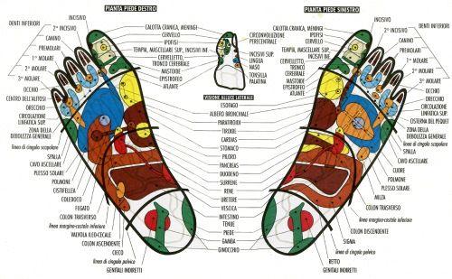 I tanti punti del piede da massaggiare per migliorare la nostra salute e trattare qualsiasi patologia