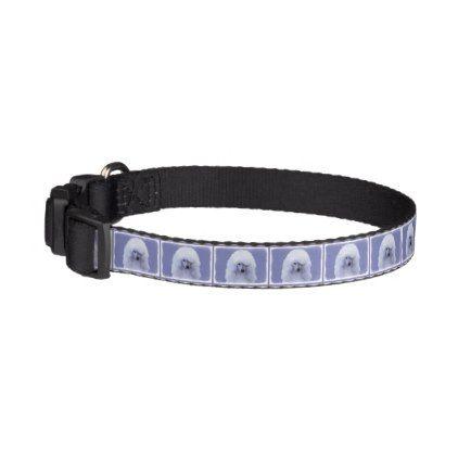 #Standard Poodle (White) Pet Collar - #petcollar #petcollars #puppy #dog #dogs #pet #pets #cute #doggie #dogcollar #dogcollars