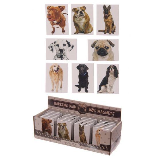 Honden magneet Golden Retriever  Honden magneet Golden Retriever. Metalen magneet met een afbeelding van een Golden Retriever hond. Formaat: ongeveer 65 cm breed en 9 cm hoog.  EUR 1.50  Meer informatie