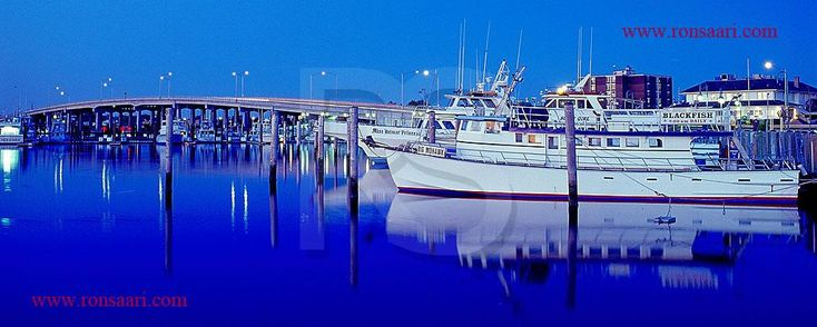 1000 images about belmar nj on pinterest saint patrick for Belmar nj fishing charters