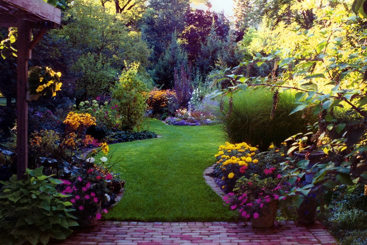 79 Best Images About Privacy Via Landscaping On Pinterest | Trees Backyard Landscaping And ...