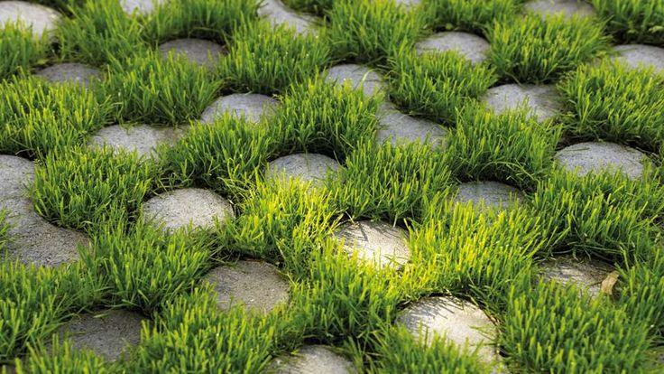 terrasse pavé gazon nature écolo graphique