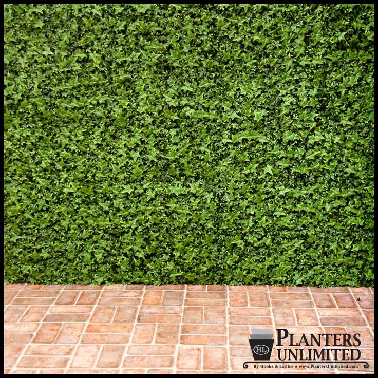 Faux ivy green wall