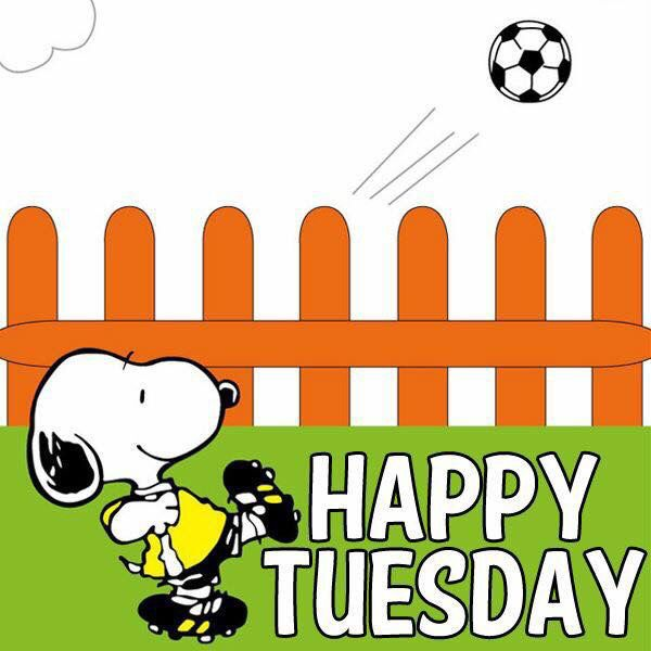 Snoopy Happy Tuesday snoopy tuesday tuesday quotes happy tuesday tuesday quote happy tuesday quotes
