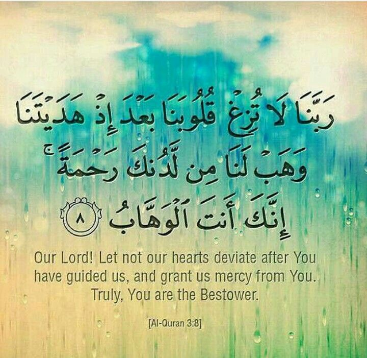 The Noble Qur'an 3:8