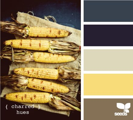 charred hues. I love the indigo offsetting the pale yellow. beautiful.