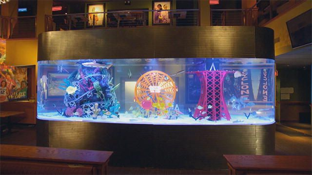 137538162138214043302701197 tanked applebees for Fish tank show
