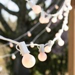 Globe String Lights, 1.25in. Bulbs, 100 Ft White Wire, E12, C7, Pearl